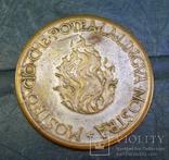 Два австрийских жетона и бонус., фото №9