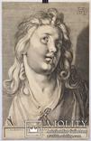 Albrecht Dürer photo 3