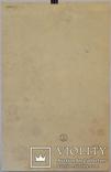 Albrecht Dürer photo 7