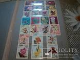 Альбом с марками.(большой) photo 3