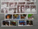 Провизории Бурятия Осетия Камчатка 1992-1994 годы. 1075 шт. photo 9
