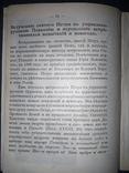 1915 Святой Петр, митрополит всея России photo 5