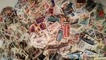 Лот марок стран мира и СССР ( 5600 шт. и около 200 блоков и квартблоков ) photo 19