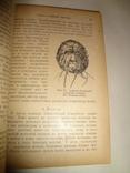 1922 Антропология Расы со статьей о уголовной антропологии