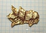 Скифская нашивка (золото) photo 2