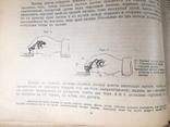 Телеграфирования на апарате морзе 1910 год, фото №7