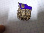 """Знак """"За хорошие знания"""" 1950-1954г №премии 435214"""