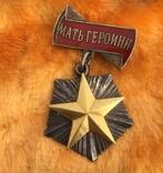 Звезда Мать-Героиня+(Полный комплект+Док) 9 детей