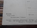1266. Почтовая карточка Коломыя Площадь Ленина 1959 год photo 8