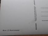 1267. Почтовая карточка Москва. Кремль. Царь-колокол 1966 год, фото №8