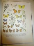 1962 Атлас Комах України з 80 кольоровими таблицями