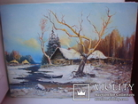 ''Перший сніг''А.Михайленко