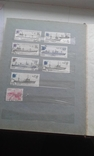 Большой лот марок. 9 альбомов. photo 73