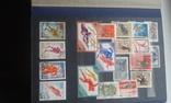 Большой лот марок. 9 альбомов. photo 86
