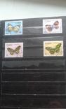 Большой лот марок. 9 альбомов. photo 137