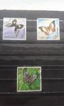 Большой лот марок. 9 альбомов. photo 139
