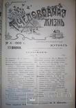 1909 Пчеловодная жизнь - годовая подшивка photo 8