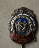 Орден Трудогого красного знамени 94799 photo 4