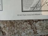 1914 г  Немецкая карта военных действий, фото №6
