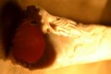 Ваза. Кость. photo 11