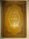 1880 Стихотворения обложка с тиснением