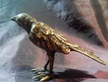 Бронзовый Ворон photo 3