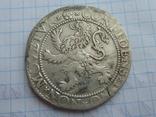 Талер Левковый Холланд 1589 год photo 6