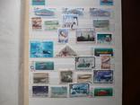 Альбом с марками. 342 шт. photo 2