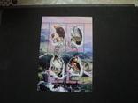 Альбом с марками и блоками .(большой) photo 4