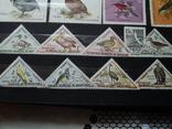 Альбом с марками и блоками .(большой) photo 7
