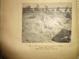 1916 Херсонский музей древностей