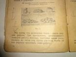 1930 Крестьянская Кухня photo 1