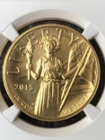100$ США 2015 г