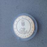 100 гривен 2003 год Пектораль photo 5