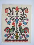 Півники.1968р., фото №2