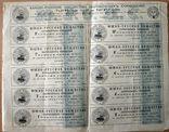 Акция 1000 р. Пароходство. Одесса 1893 г. photo 3