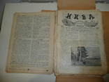 Журнал Нива. Фрагменты, остатки 1913г., фото №4
