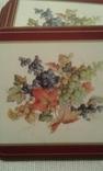 Костеры  Pimpernel  - Англия  6 шт., фото №4