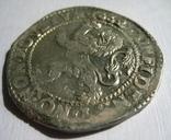 Талер левковый 1662 г. photo 7