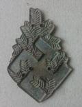 Знак горных подгальских стрелков photo 3