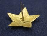 Звезда на головной убор для комначсостава обр.1936 г., 38 мм photo 4
