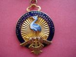 Масонская награда за благотворительность photo 1
