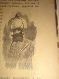 1892 История из Русской Турецкой Молдавской жизни
