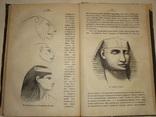 1882 История Рисовальщика