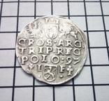 Трояк 1597 р, Всхова