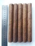 Сигары (17см) - 5 шт.