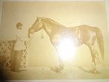 1867 Журнал Коннозаводства  с настоящей фотографией лошади
