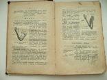 Книга Божий Мир в Беседах и картинках 1907г., фото №10