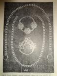 1948 Археология Киев тираж 1500