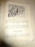 1948 Сокровища исчезнувших Городов Археология, фото №4